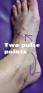 Pulse points in the feet